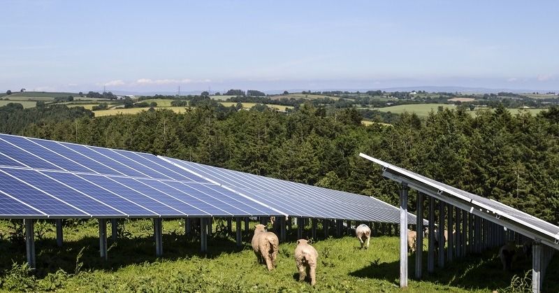 elgin, solar farms