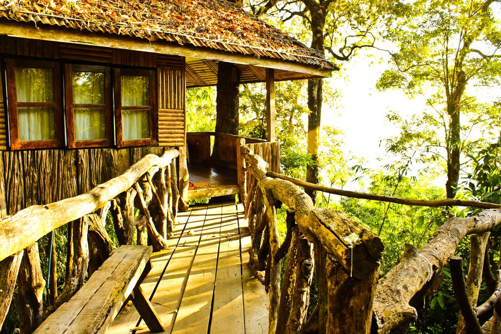 Treehouse Planning Permission Rural